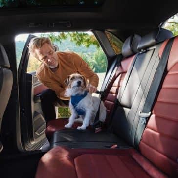 2020 VW Atlas Cross Sport Back Seat