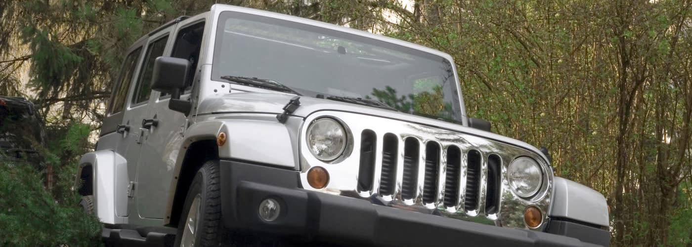 Jeep Wrangler in Woods