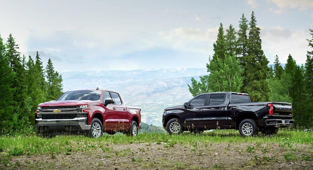 2019 Chevy Silverado 1500 models in red and black