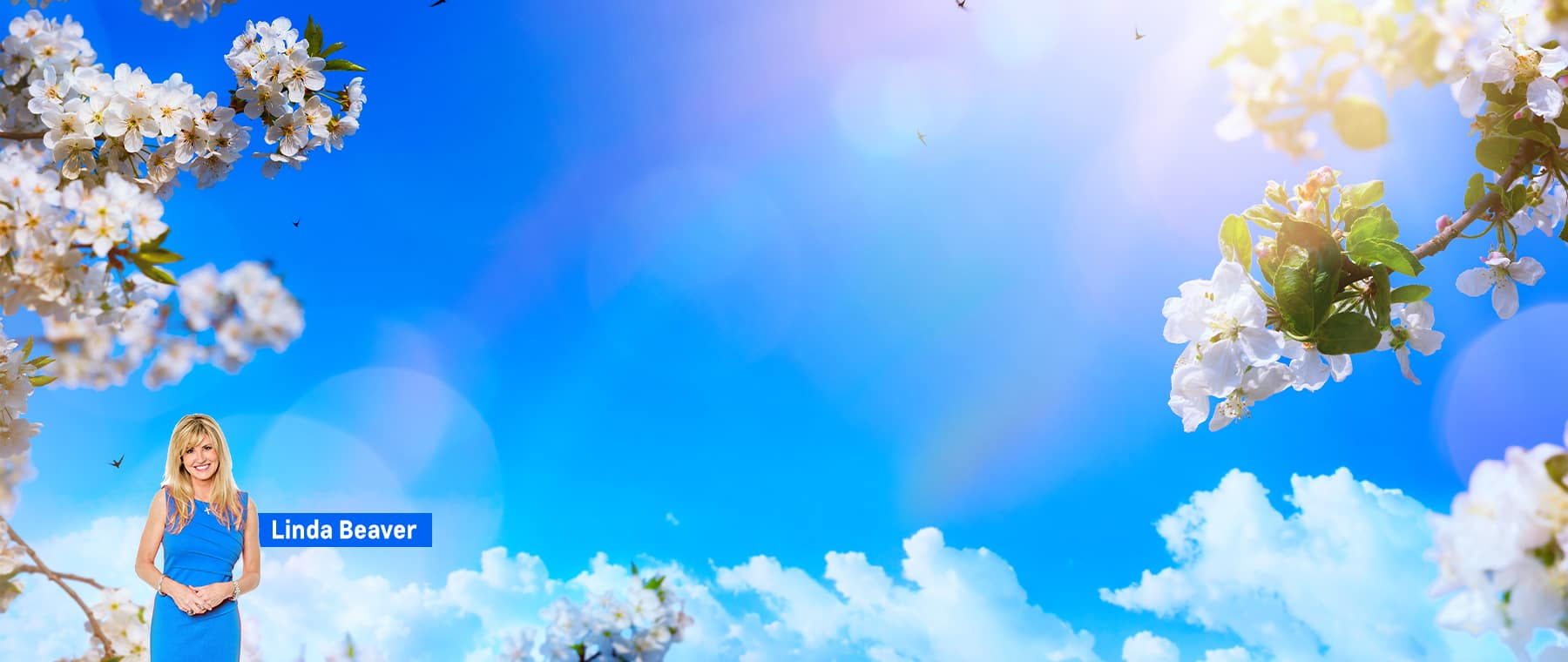 Spring/Summer Background