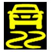 BMW Warning Light Dynamic Stability Control