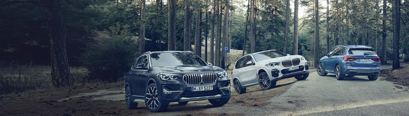 BMW Models in Woods