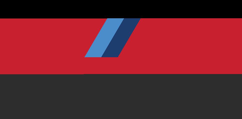 203 Customs