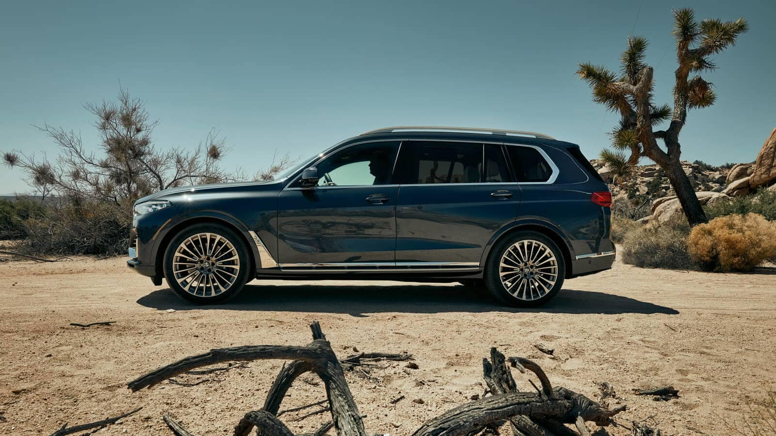 2019 BMW X7 stunning profile