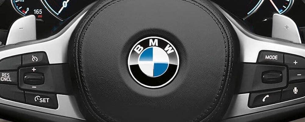 BMW logo on 2019 5 series steering wheel