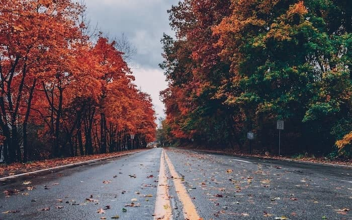 5 Car Care Tips For Fall 2019