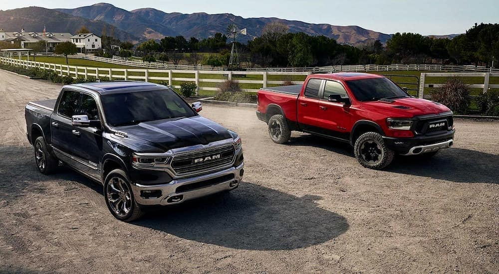 A black and a red 2019 used Ram 1500 are parked at a farm in front of mountains.