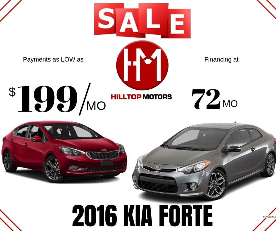 September Forte Sales!