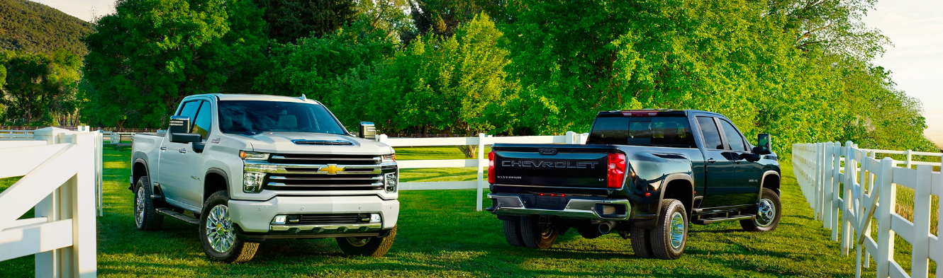 Two 2020 Chevy Silverado HD models parked in a horse pasture