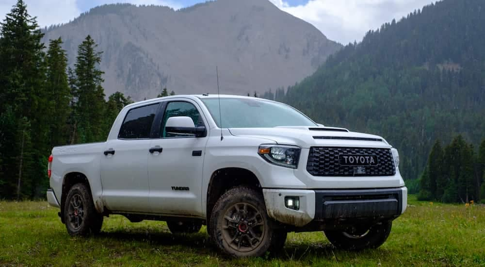A dirty 2019 Toyota Tundra TRD Pro in the wilderness