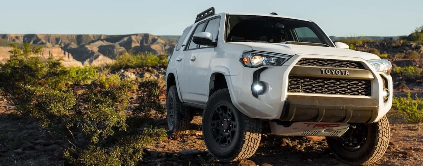 A new Toyota 4Runner in white powers over rocks in a barren desert landscape