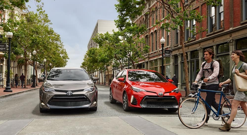 A pair of 2019 Toyota Corollas in gray and red, one of the most popular Toyota cars for sale