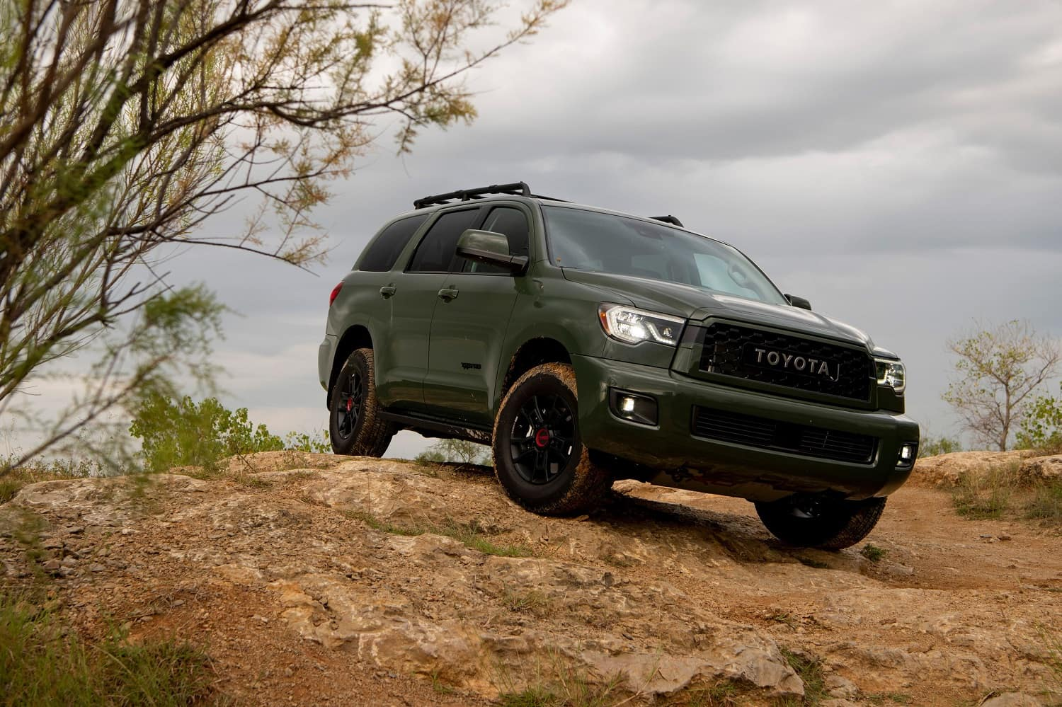 New Toyota SUVs and Trucks for Sale in Eugene, OR