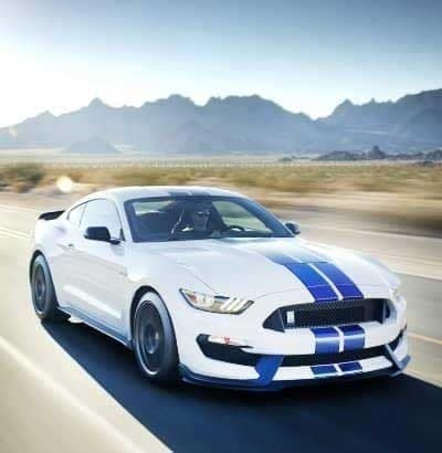 ML-Mustang