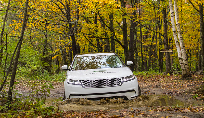 White Range Rover driving on a trail in the forest