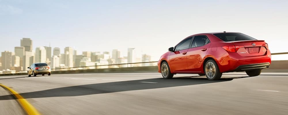 2019 Toyota Corolla on the Road