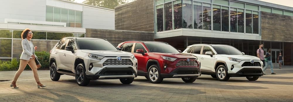 2019 Toyota RAV4 models in a row