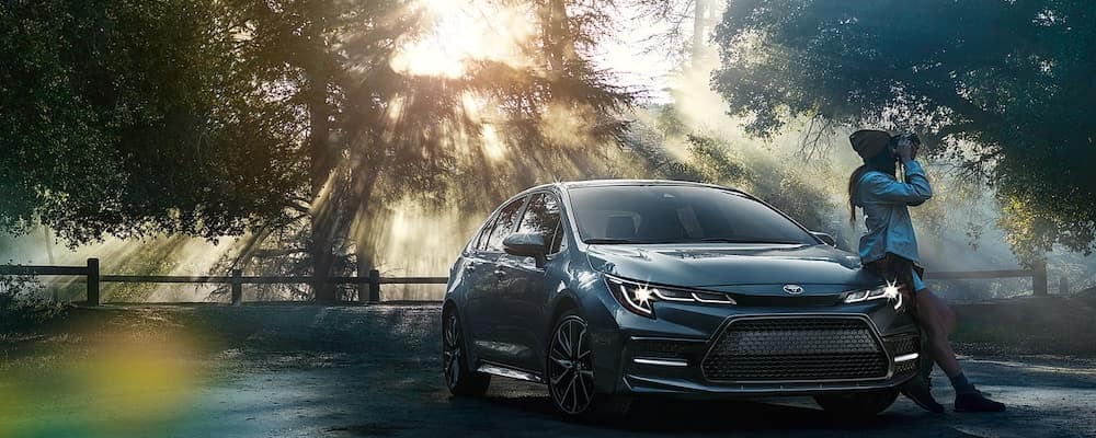 2020 Corolla in the woods