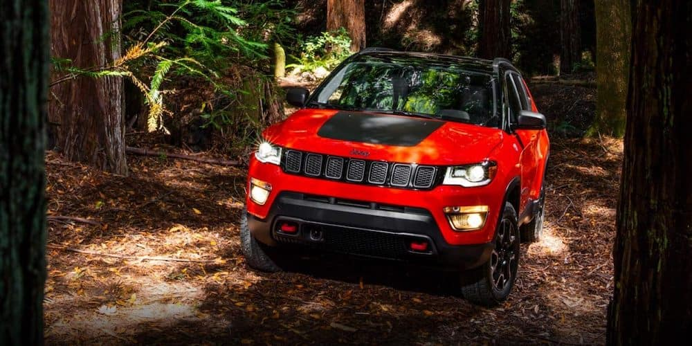 2019 Compass Trailhawk in the woods