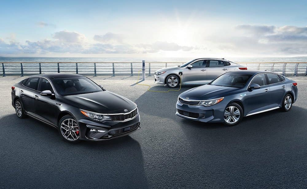 Three 2019 Optimas