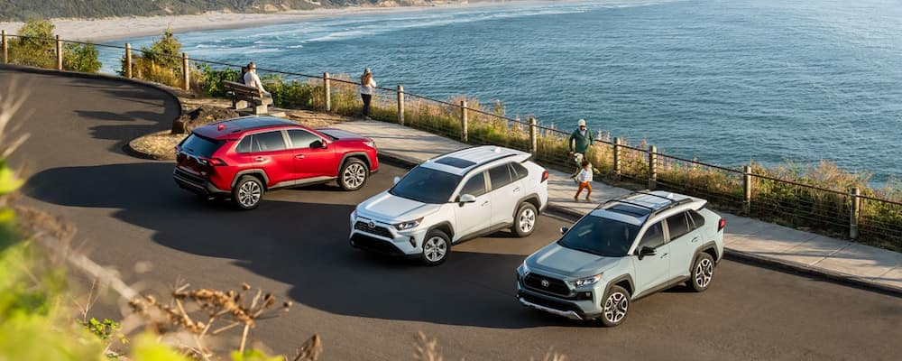 Three RAV4 SUVs parked on the side of a body of water