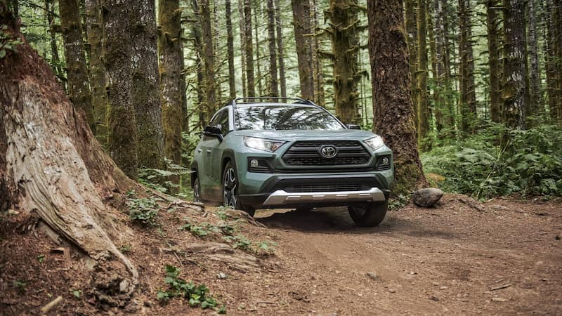 RAV4 driving head on through a forest
