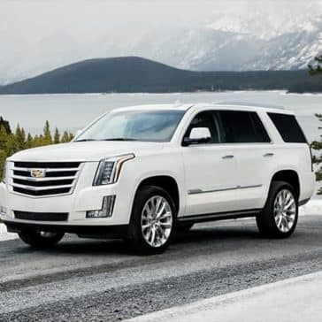 2019 Cadillac Escalade on a snowy mountain pass
