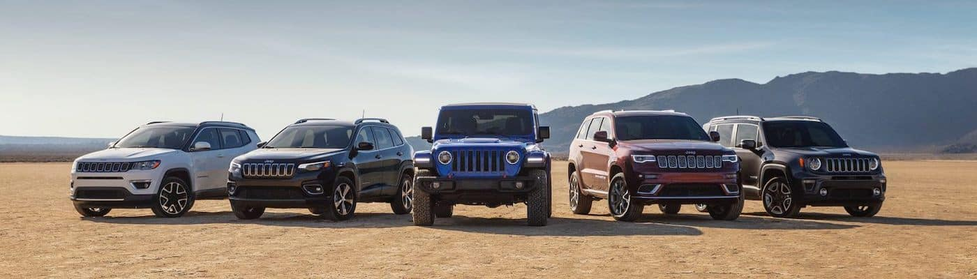Jeep Lineup in a field