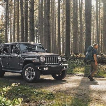 2020 Jeep Wrangler In the Woods