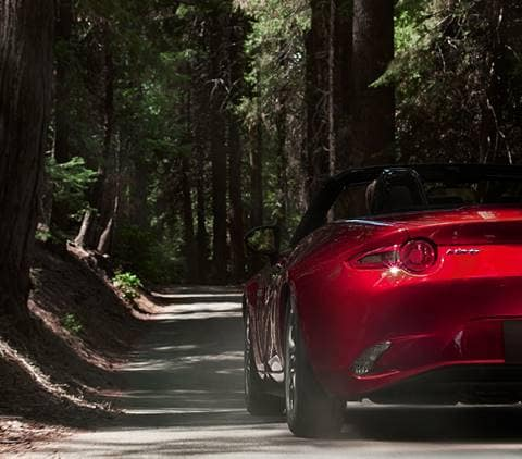 2019 Mazda Miata in Woods