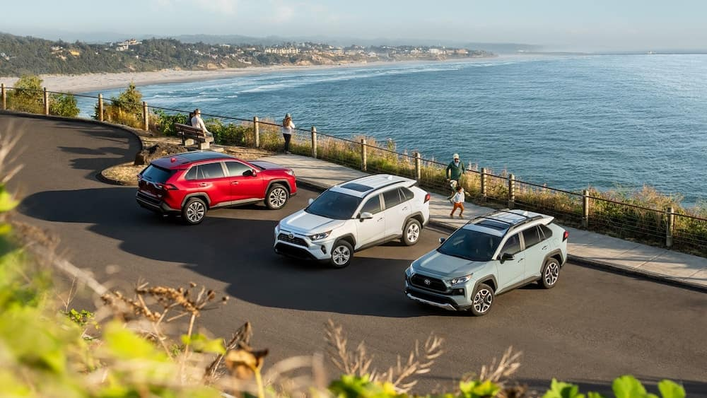 Multiple Toyota RAV4s Parked at a Beach