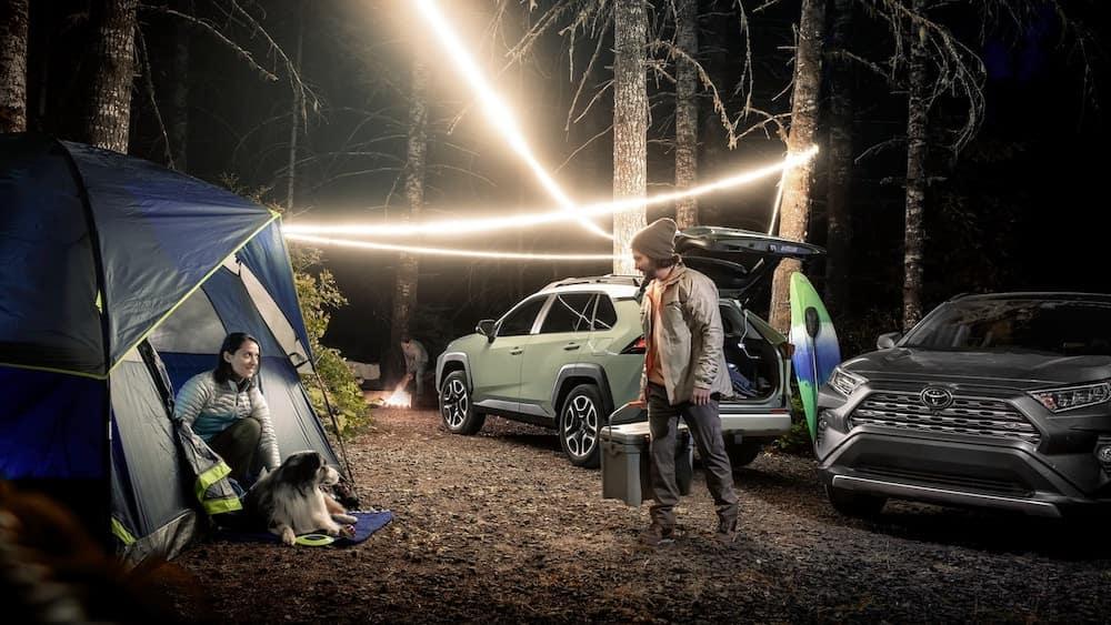 Toyota SUVs in Wilderness