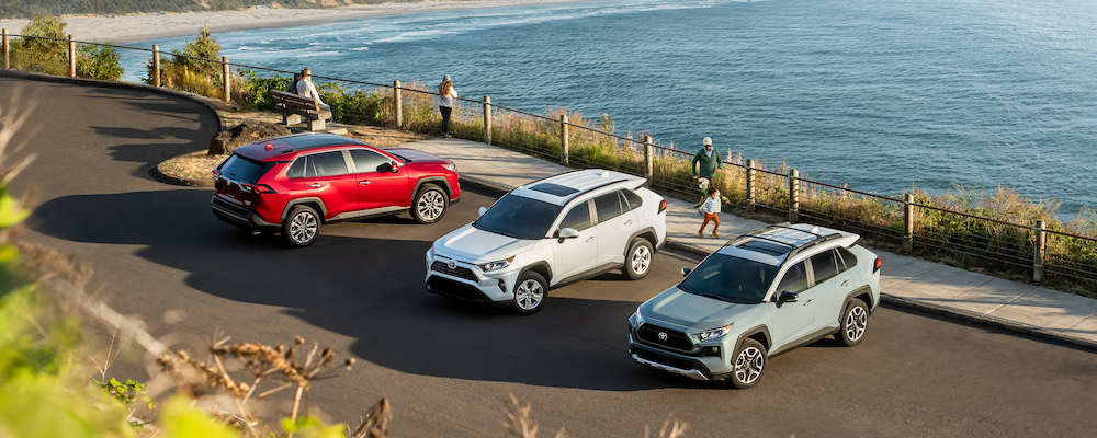 2019 Toyota RAV4 Models Parked Along Beach