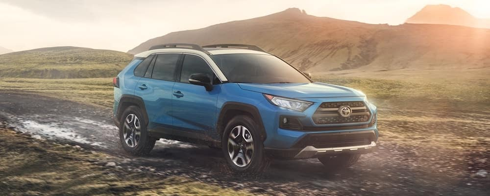 2020 Toyota RAV4 in Wilderness