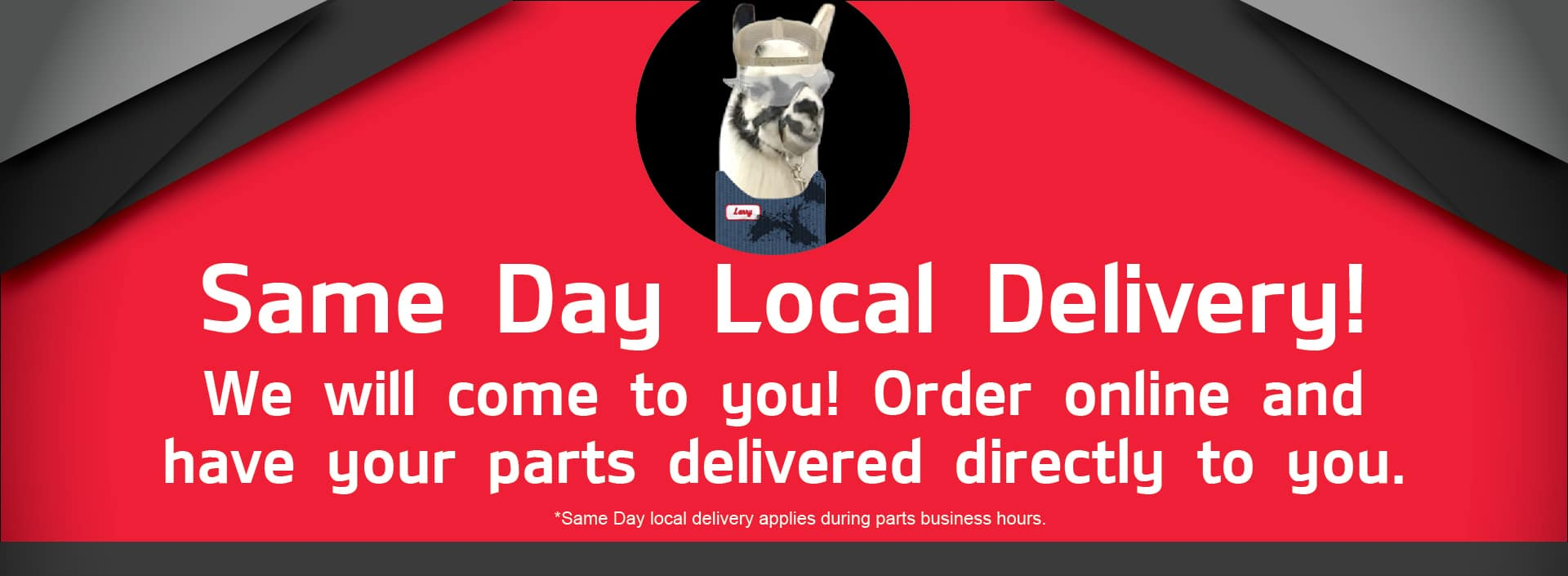 same day local delivery