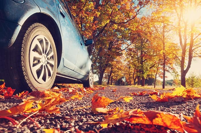 Fall car care from Toyota of North Charlotte