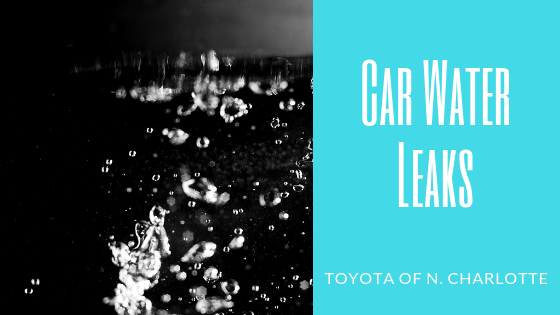 Toyota of n. Charlotte's tips on water leaks in your car