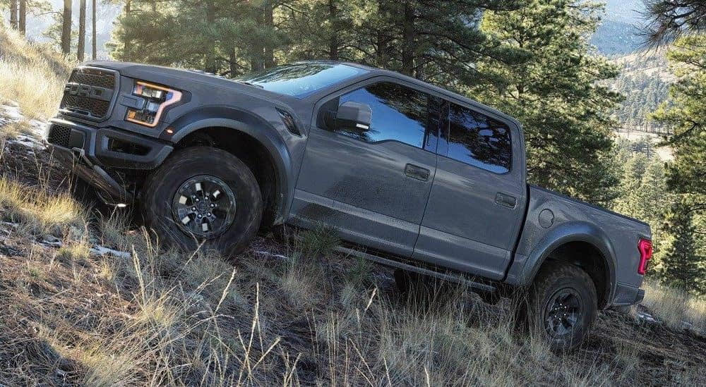 Ford Truck climbing mountain