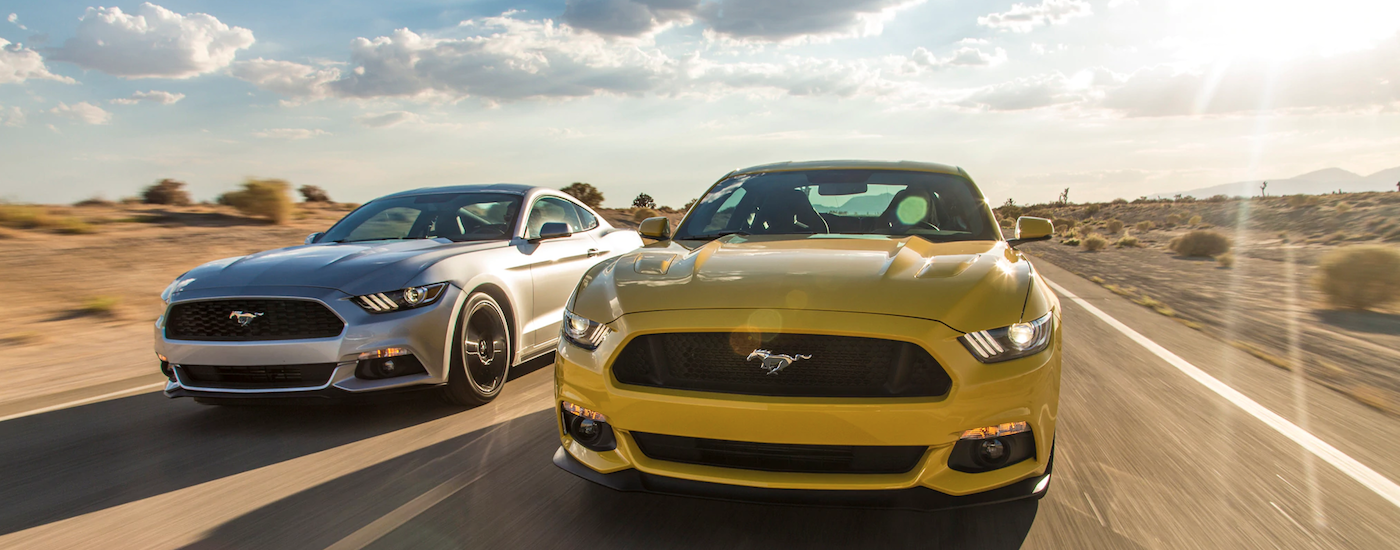 Two Ford Mustangs, yellow and silver, speed down a empty highway