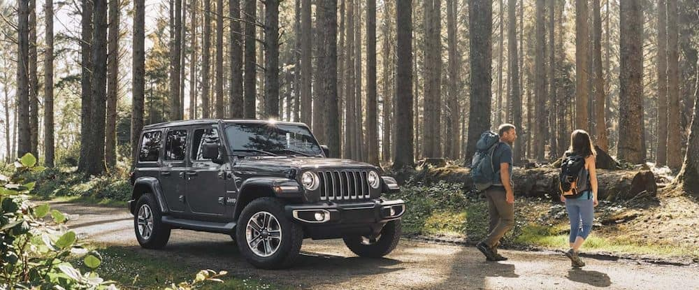 2020 Jeep Wrangler Forest